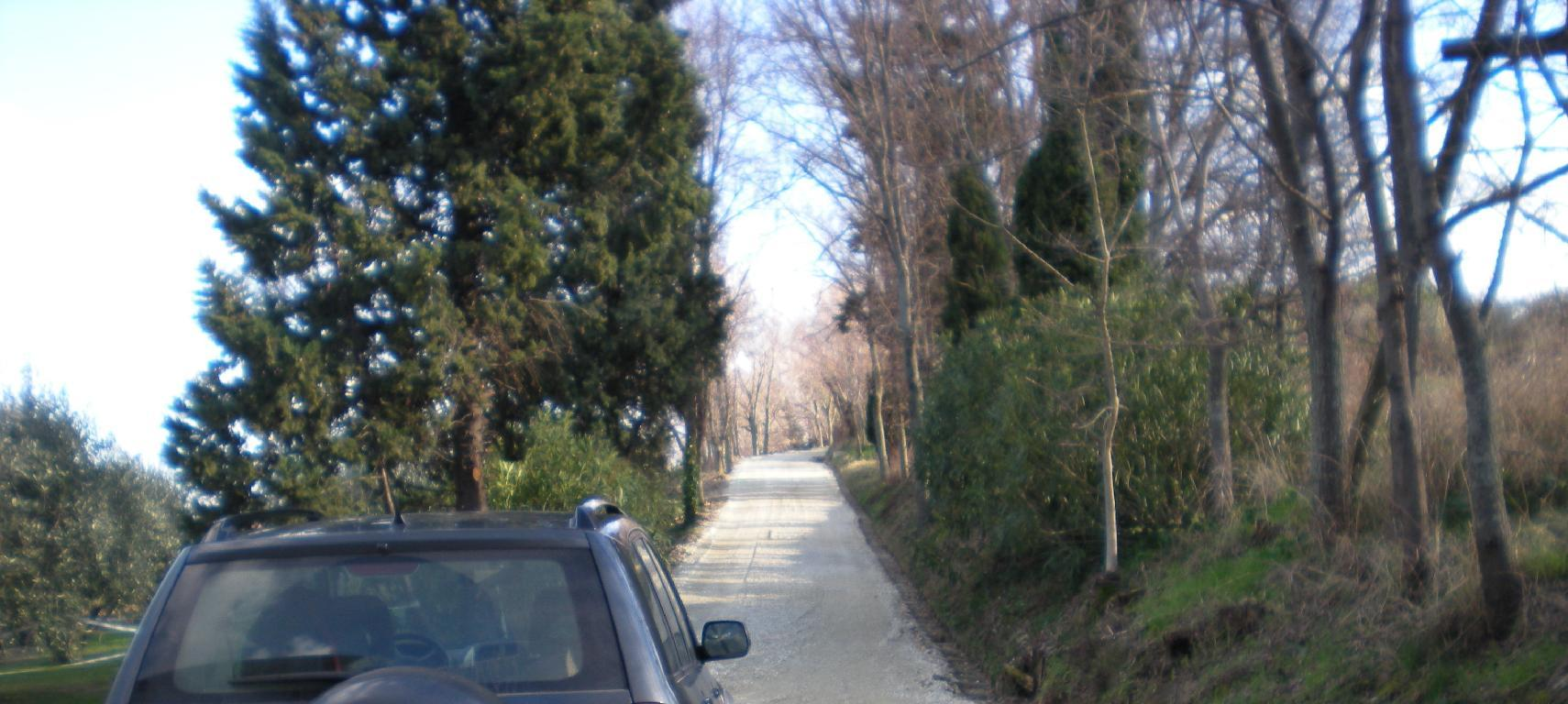 RMGI12 - VILLA - VENDITA - SENIGALLIA